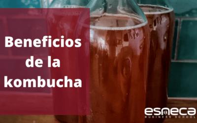 Beneficios de la kombucha para la salud