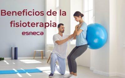 ¿Por qué se celebra el día mundial de la fisioterapia?