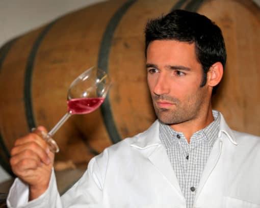 estudiar maestría en elaboración de vinos