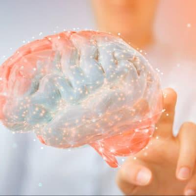 estudiar maestría neuropsicología y deterioros cognitivos en Esneca Business School latinoamérica