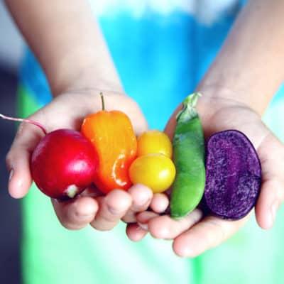 Estudiar maestría en nutrición y dietética
