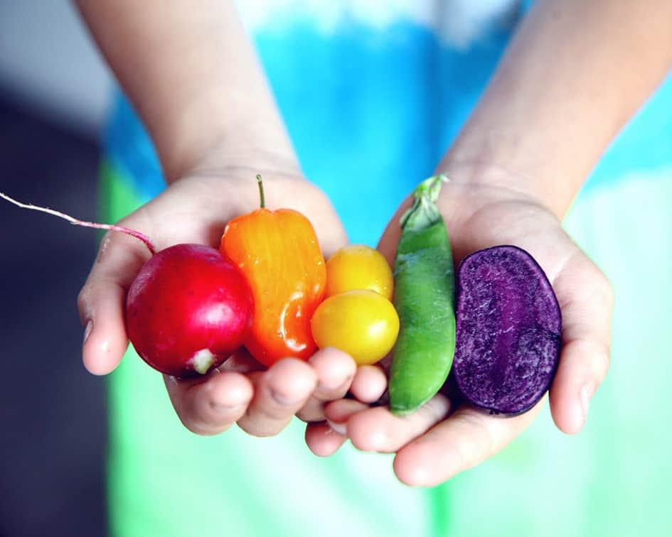 Estudiar formación en nutrición