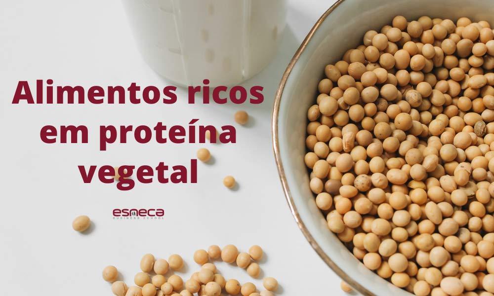 5 alimentos ricos em proteína vegetal que não podem faltar nas suas refeições